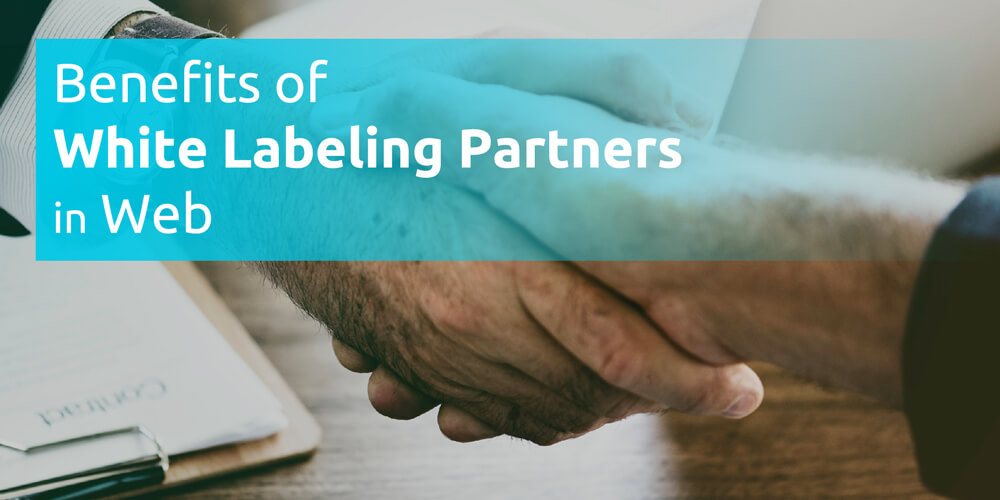 Benefits of White Labeling Partners in Web