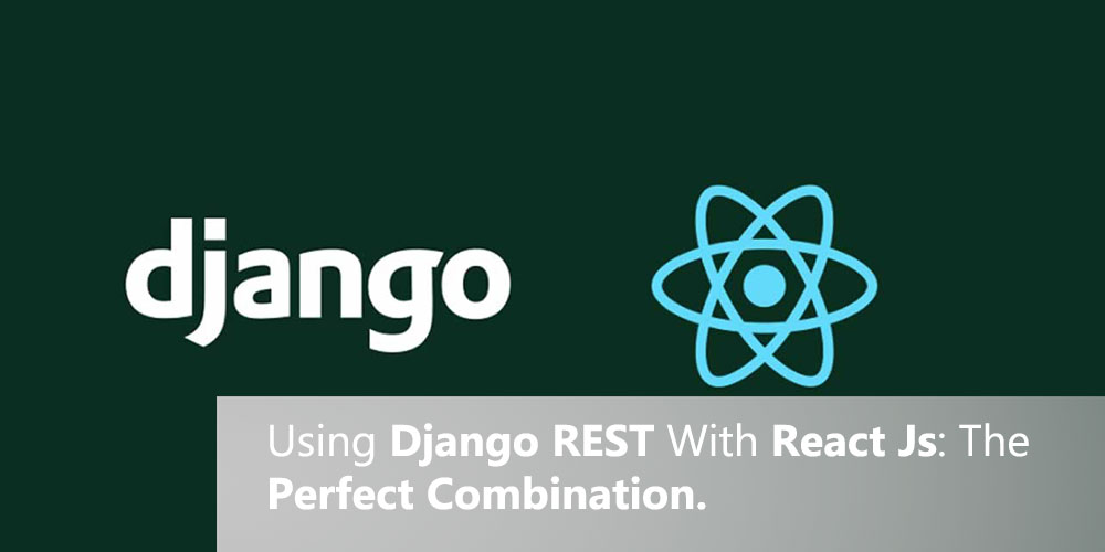 Using Django REST With React Js: The Perfect Combination